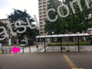 ホットヨガLAVA(ラバ)阿佐ヶ谷店までのアクセス2